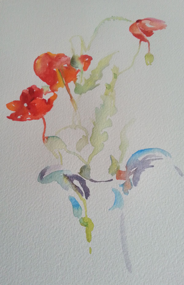 Once I paint the poppies in a direct manner, this conditions me to do the same with the vase.  In watercolor, I try to treat everything in the same way from start to finish.