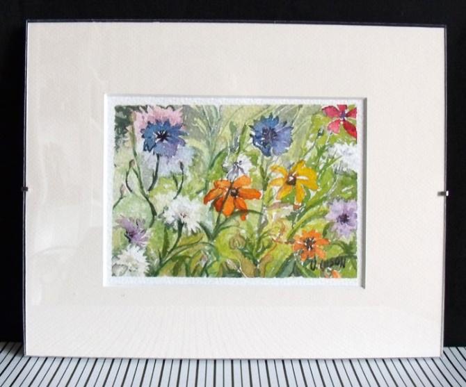 summer-wild-flowers-2014