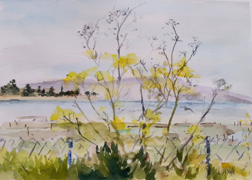 A watercolor of a natural yell flowered brush growing in front of a fence encosing the bird sanctuary in Alameda.