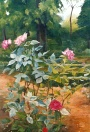 Botanic Garden Madrid, Spain 1998