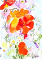 Poppies and Daisies 2015