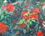 Roses North Light 2006