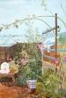 Terrace in Vallecas 2003