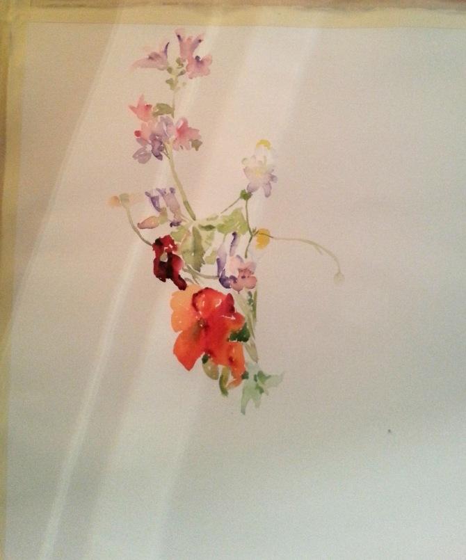Spanish Wild Flowers