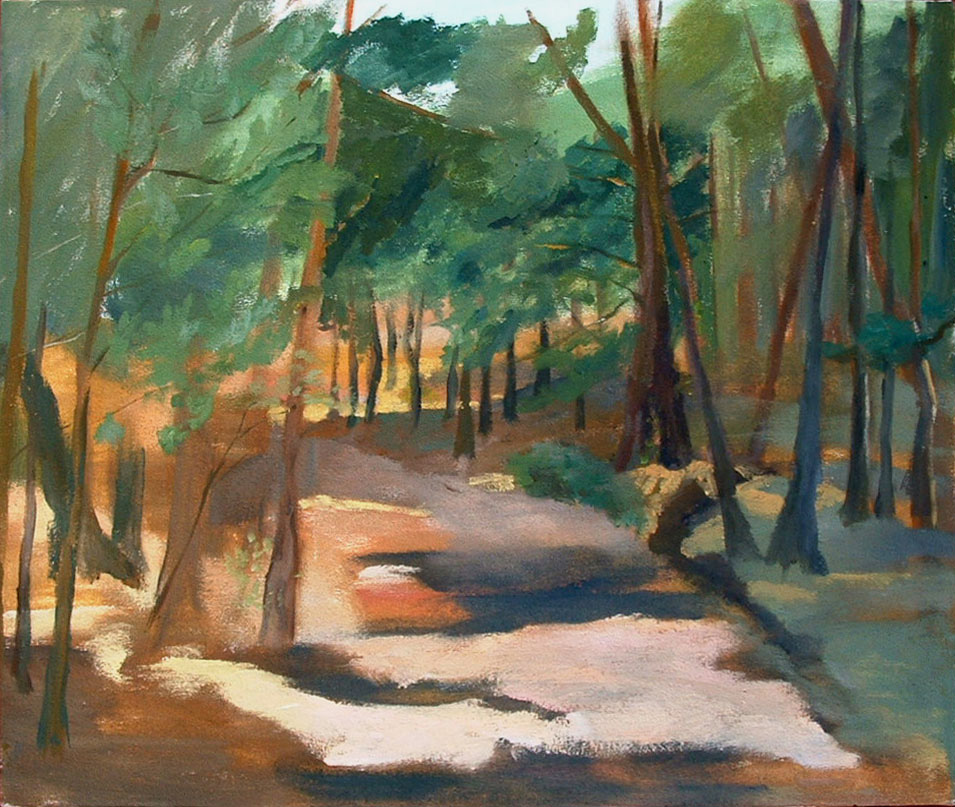 An oil painting of a path in the forest of Cantalojas, Spain You can see bits of the blue sky through the trees and most of the trees are pine trees.