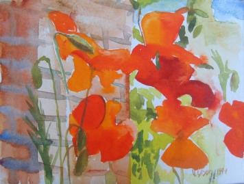 Poppies 1999