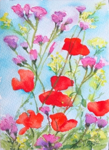 Poppies and Wild Flowers 2004