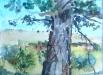 A Hot Day in Cantalojas 2007