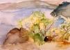 El Pantano de San Juan 2004