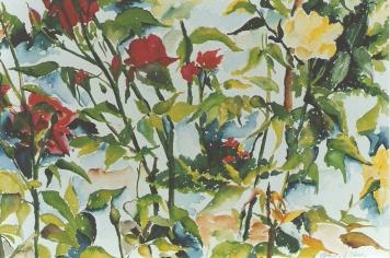 Moraleja Roses 1994