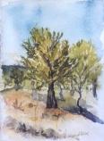 Parque Sur 2006