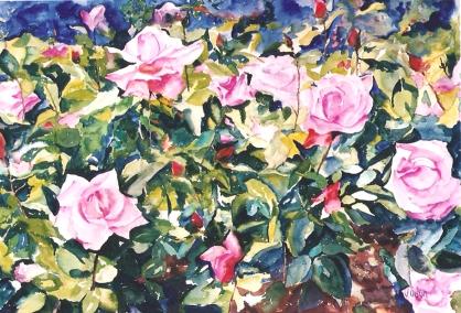 Rose Garden 2003