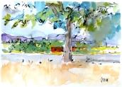 Vallecas Parque Fofo August 2016
