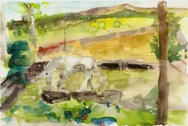 A White Horse in Cantalojas 2003