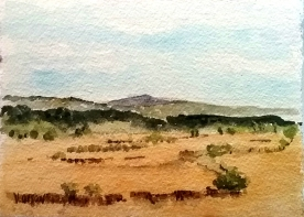 Cerro del Campo Cantalojas, Spain August 2016