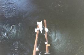 Exxon Valdez Oil Spill 1989