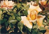 Roses 1997