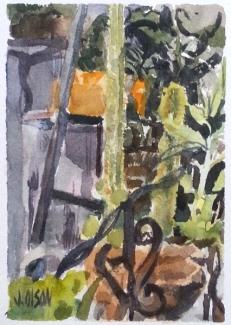 Cactus Garden in San Diego California Summer of 2015