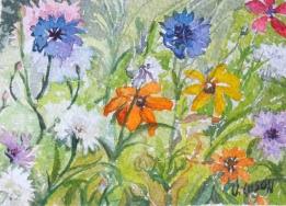 Summer Wild Flowers 2014