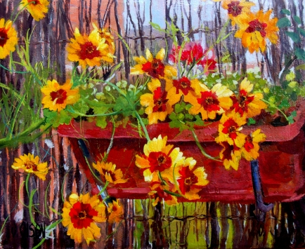 Bright Yellow Flowers with Red spalshed in the middle in a Garden Pot