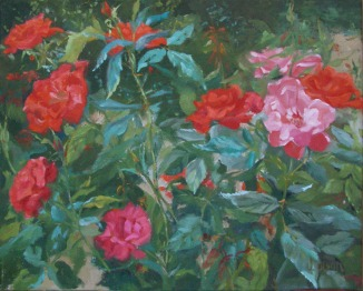 Red and Pink Roses painted in west light of the Retrio Park Rose Garden