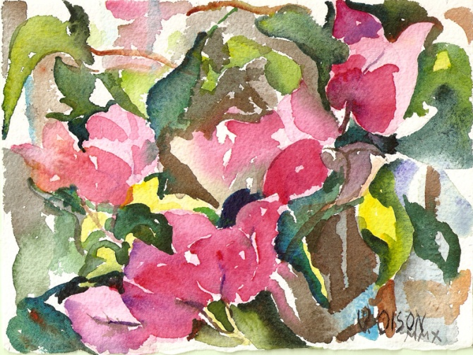 Small watercolor of bougainvillea
