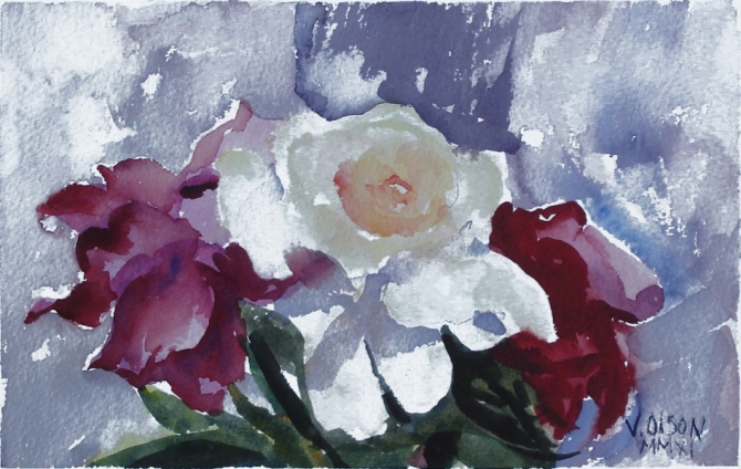 A small watercolor of white a white rose between two red roses.