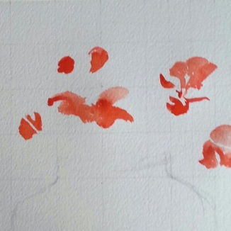 A picture of a watercolor in process. You can see a light grid, pencil drawing and red watercolor paint of poppies.