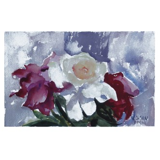 Three Roses 2011 Watercolor on Arches 300 gsm 19.05x28 cm 7.5x11 in €20