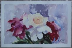 Watercolor of three roses